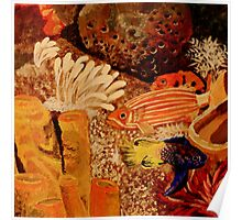 Colorful Reef Fish  Poster