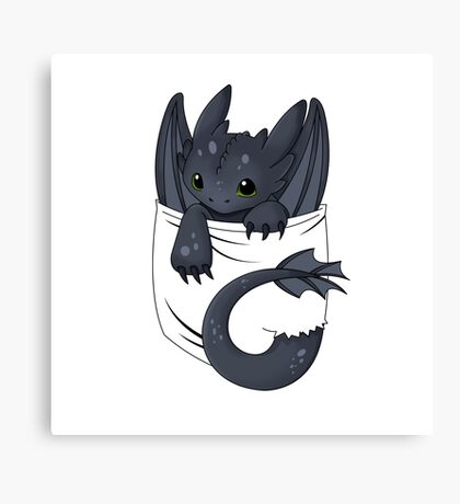 Dragon in your pocket Canvas Print