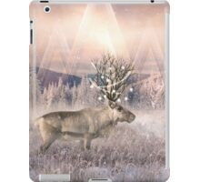 Stillness of Winter iPad Case/Skin