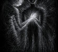 Light Heart by Adam Perry