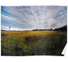 Open fields Poster