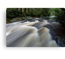 Upstream Pencil Pine Canvas Print