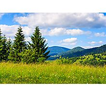 meadow with in the mountains Photographic Print