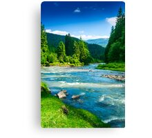mountains trees and a river Canvas Print