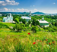 red poppy flowers and the green monastery by pellinni