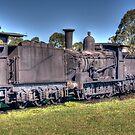 The Railway Graveyard, Dorrigo, NSW by Adrian Paul
