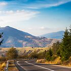 road in high mountains by pellinni