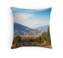 road in high mountains Throw Pillow