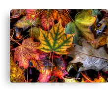 Just Little Old Me Canvas Print