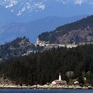 Lighthouse Next to An Old Growth Forest by Wolf Read