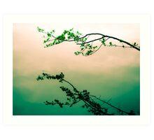 Very Zen Art Print