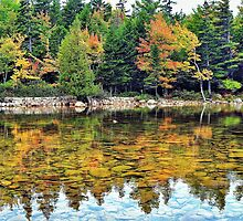 Jordan Pond, Acadia National Park, Maine by fauselr