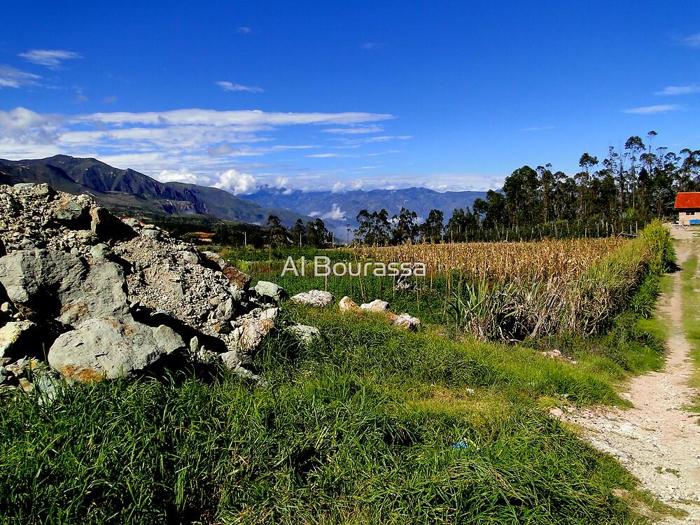 Saraguro Ecuador Valley by Al Bourassa