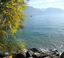 Switzerland View 30 by fladelita