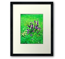 happiness grows Framed Print