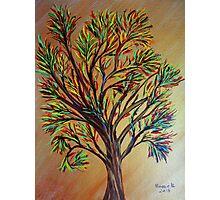 Tree/semi abstract Photographic Print