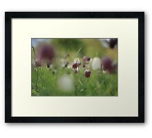 Meadow at Downton Abbey Framed Print