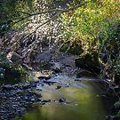 Overgrown by Georden
