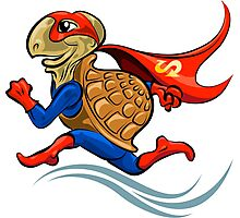 Turtle Superhero Photographic Print