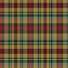 02350 Hillsborough County, Florida District Tartan Fabric Print Iphone Case by Detnecs2013