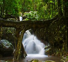 Over Flow by marty1468