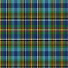 02352 Allegheny County, Pennsylvania District Tartan Fabric Print Iphone Case by Detnecs2013