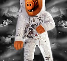 ❀◕‿◕❀ALF RETURNS FROM PLANET MELMAC PICTURE/CARD❀◕‿◕❀ by ✿✿ Bonita ✿✿ ђєℓℓσ