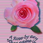 A Rose... by anyother name... by DAdeSimone