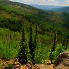Happy feet hikers by raymona pooler