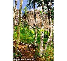 Alasal hiking Photographic Print