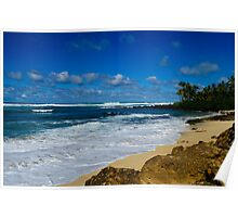 Rugged south shore Oahu Hawaii Poster
