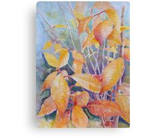 last leaves of Autumn Canvas Print