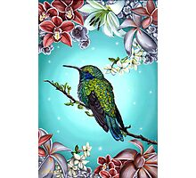 Junebug Green Hummingbird with Jasmine Orchids Flowers Photographic Print