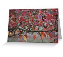Autumn Leaves,S.A. Greeting Card