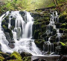 Olivia Creek Cascades  by bluetaipan
