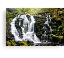 Olivia Creek Cascades  Canvas Print