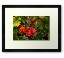 Red and Green Vines Framed Print