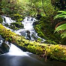 Olivia Creek Cascades pt 2 by bluetaipan