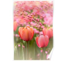 Spring Froth Poster