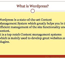 Wordpress benefits by css4me123