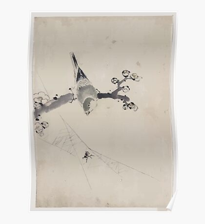 A bird perched on a tree branch with blossoms watching a spider on a web 001 Poster