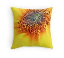 How Hot Is The Sun?? Throw Pillow