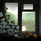 Windowstill by Igor Zenin