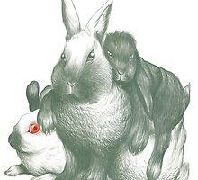 Rabbit Gang by racheljcox