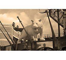 Comerica Park - Detroit Tigers Photographic Print