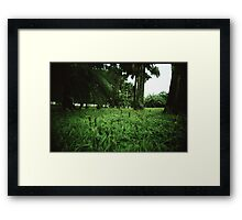 Welcome to the Jungle - Lomo Framed Print