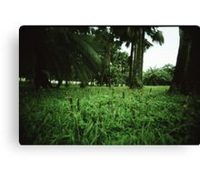 Welcome to the Jungle - Lomo Canvas Print