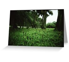 Welcome to the Jungle - Lomo Greeting Card