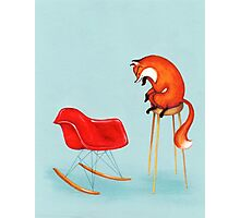 Fox Perplexed by Modern Furniture Photographic Print