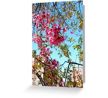 NYC in the Spring Greeting Card